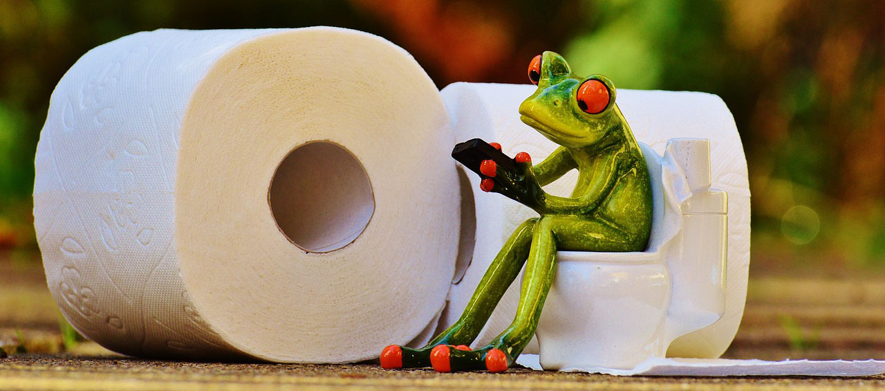 Frog on toilet figurine by toilet papers